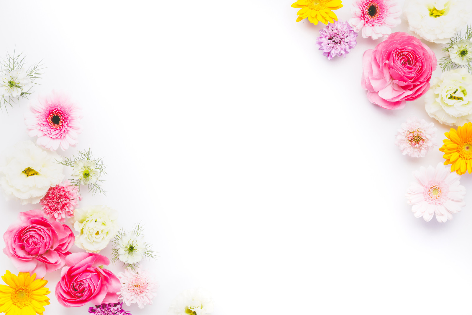 「背景デザインに使いやすいお花のフレーム」の写真