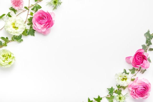 アイビーと薔薇のフレームの写真