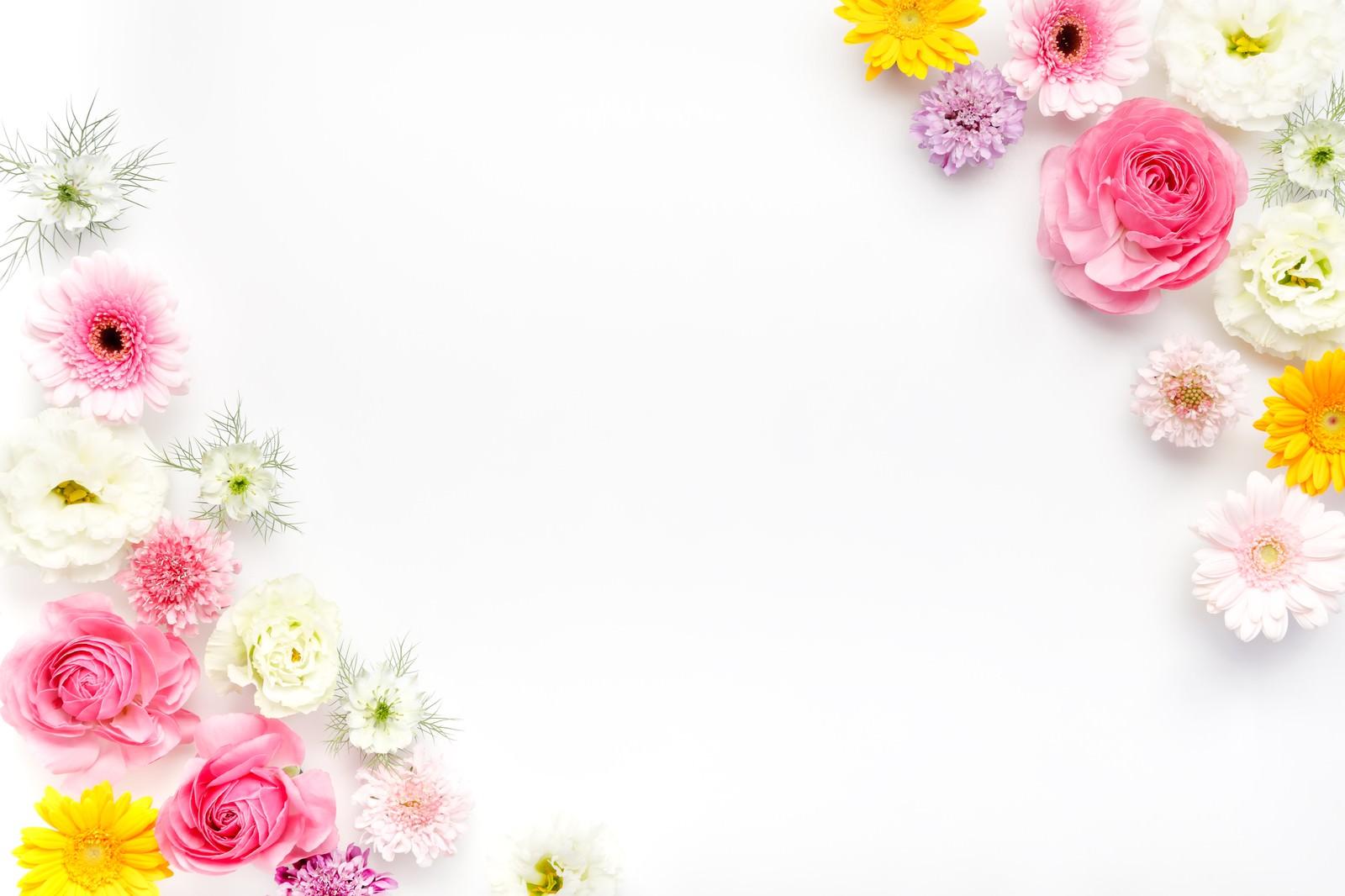 「フレーム・背景に使いやすい薔薇や生花フレーム・背景に使いやすい薔薇や生花」のフリー写真素材を拡大