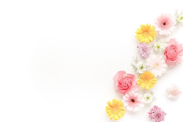 メッセージが入れやすい花の背景の写真
