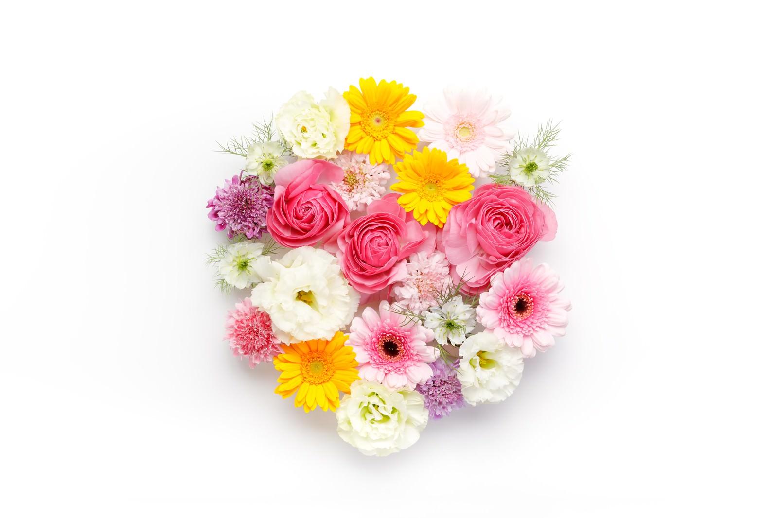 「お花のラウンド」の写真