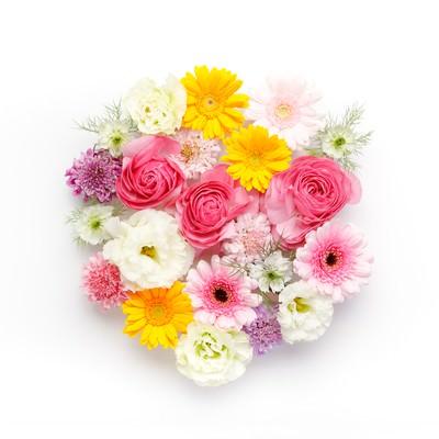 「お花のラウンド」の写真素材