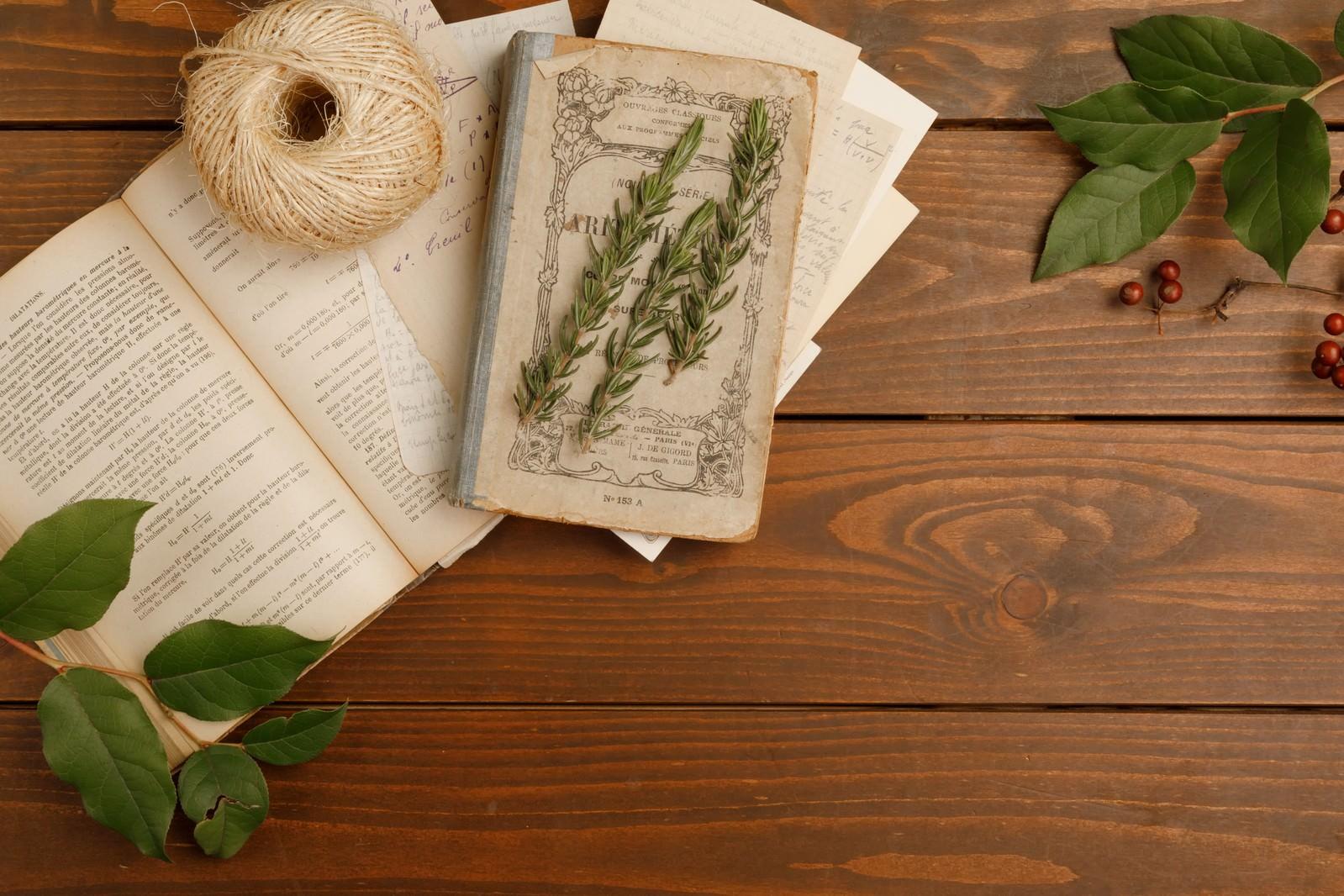 数秘学占いの仕方|数秘学的な数字の持つ意味・数秘学の本