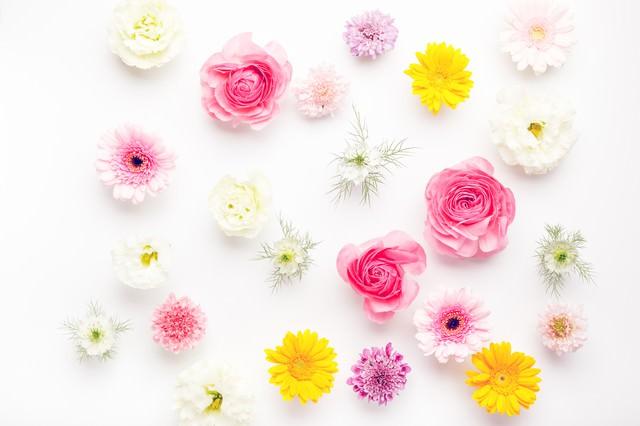 お花いっぱい春色テクスチャー(マット)の写真