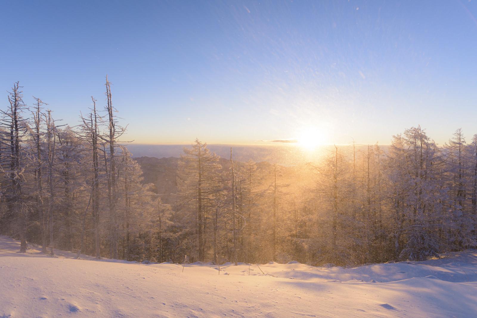 「拭きあがる雪と朝焼け(雲取山)」の写真