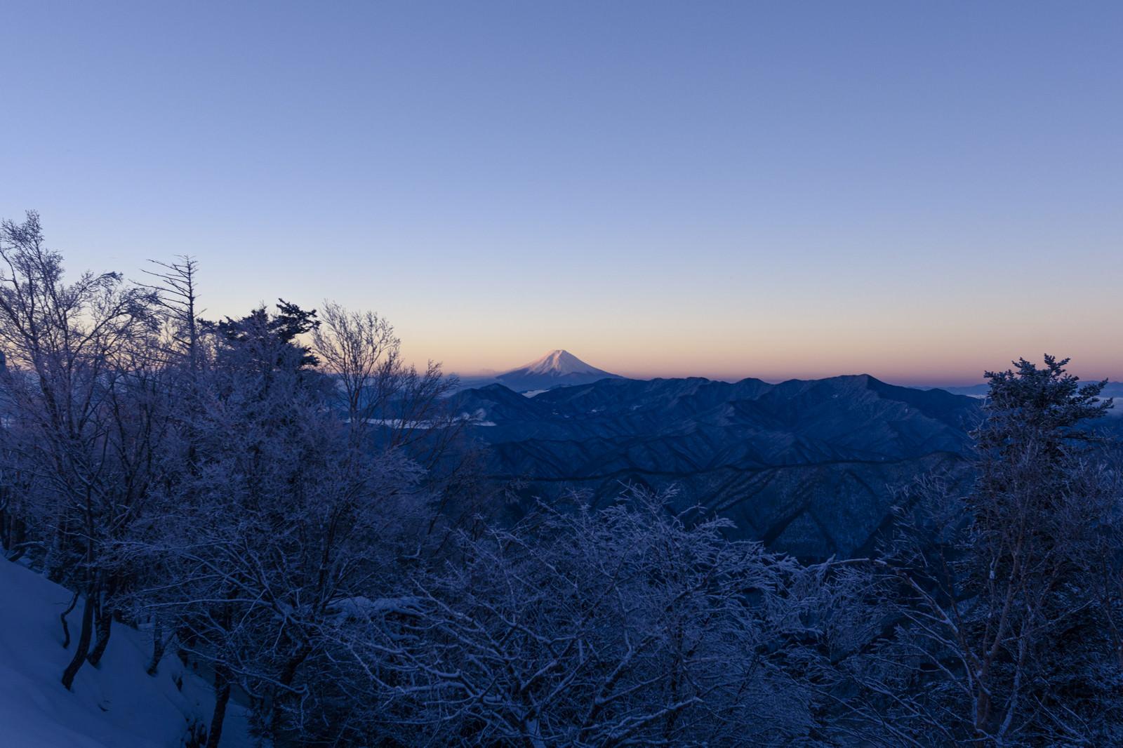 「朝日を待つ富士山(雲取山)」の写真
