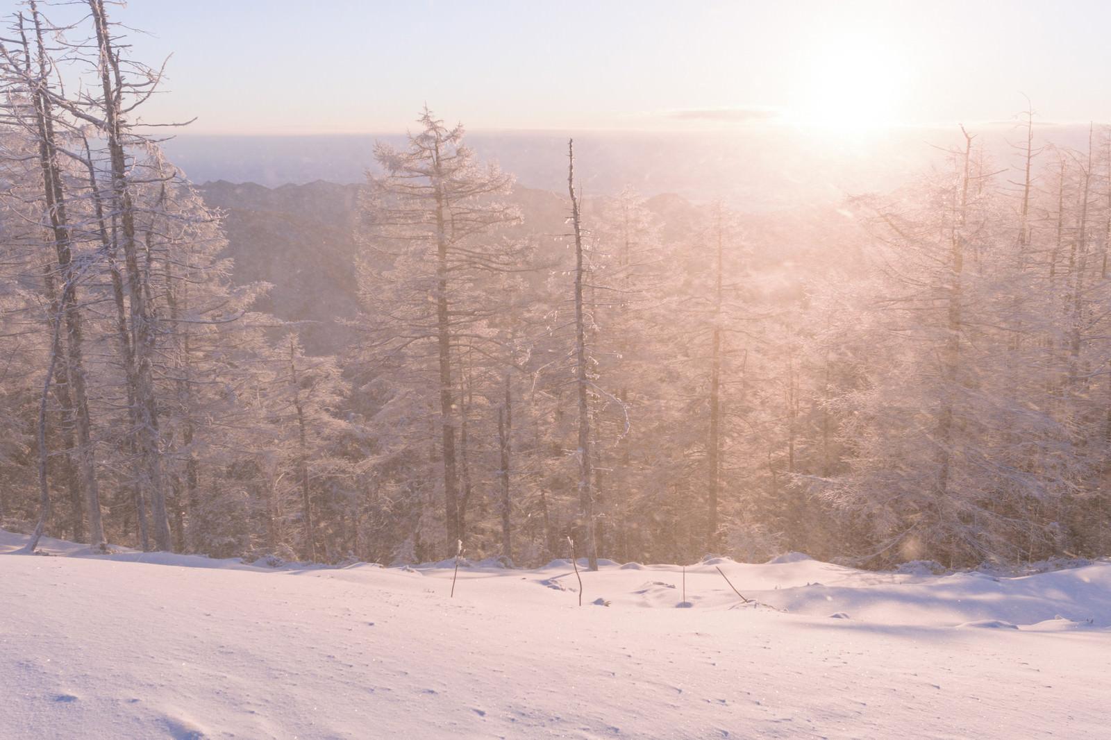 「雪煙に包まれる(雲取山)」の写真