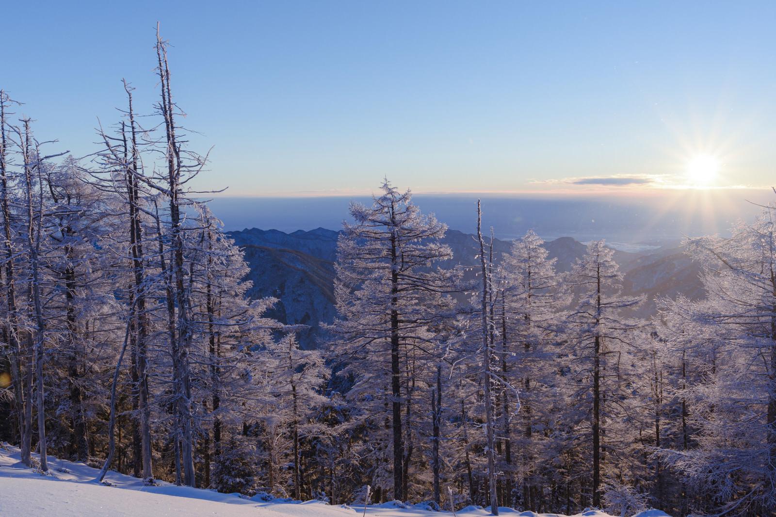 「雲取山山頂で迎える朝日」の写真