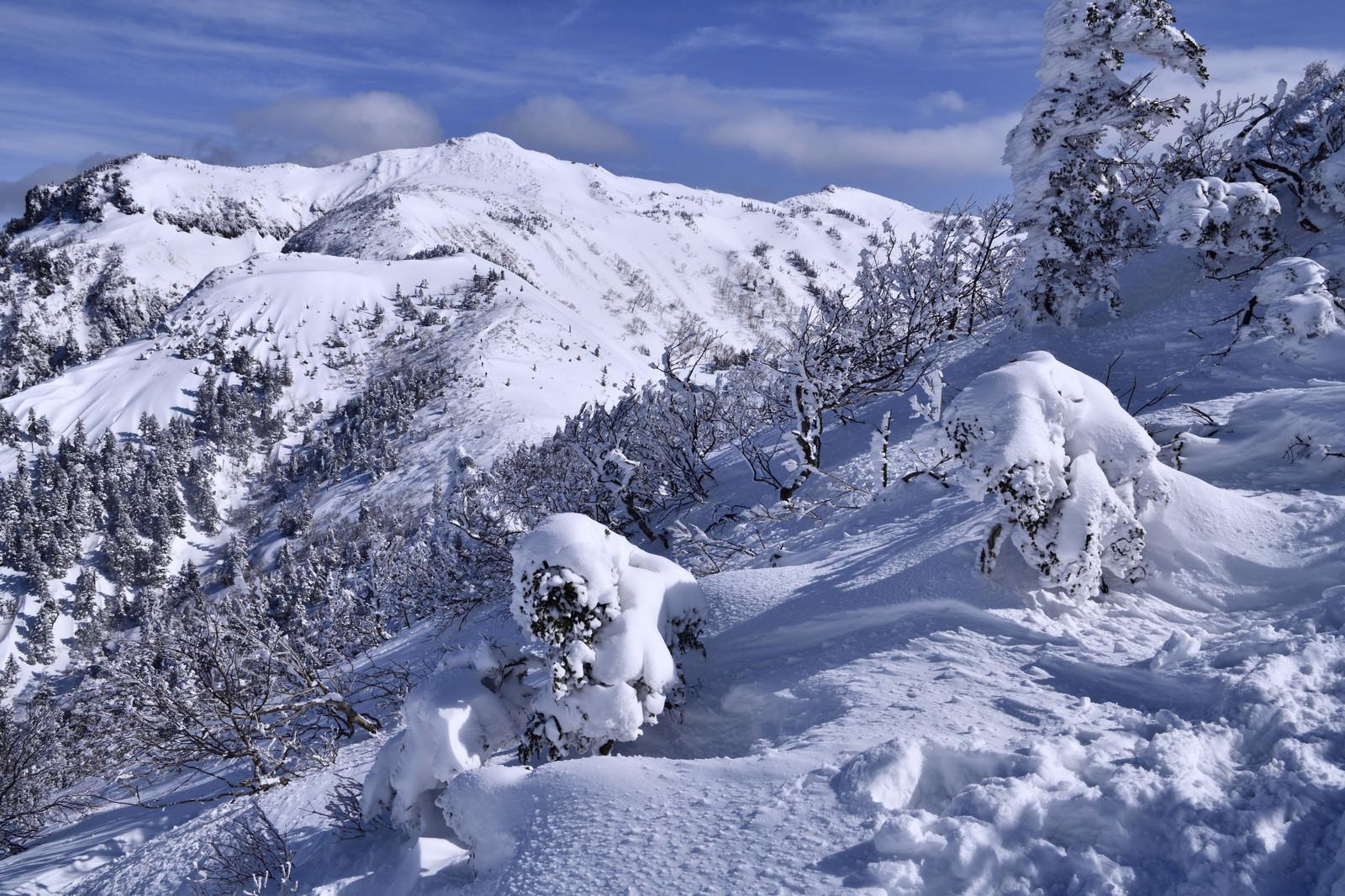 「樹氷と雪化粧した上州武尊山(じょうしゅうほたかやま)」の写真