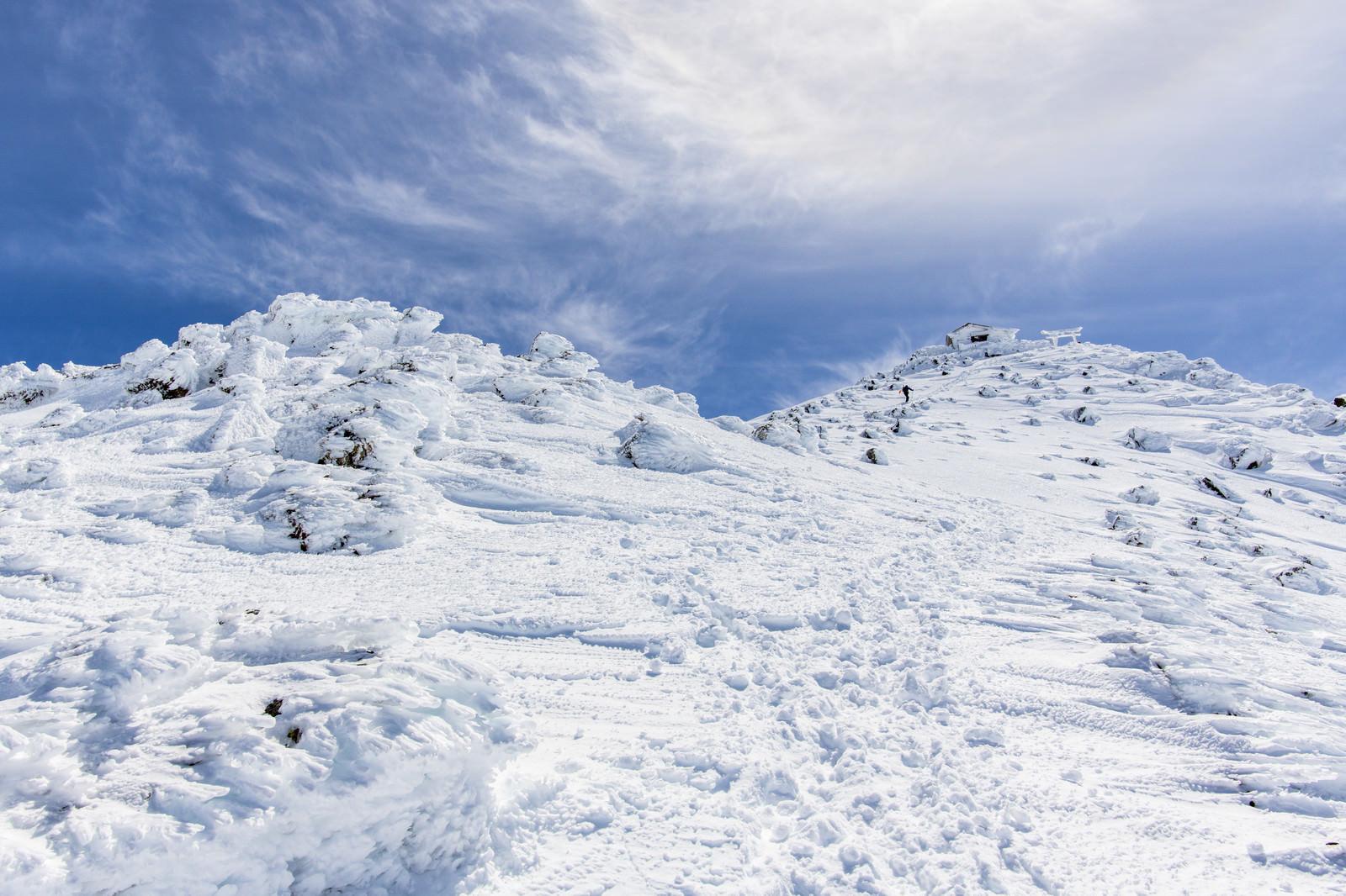 「風雪で発達したエビの尻尾と乗鞍岳山頂」の写真