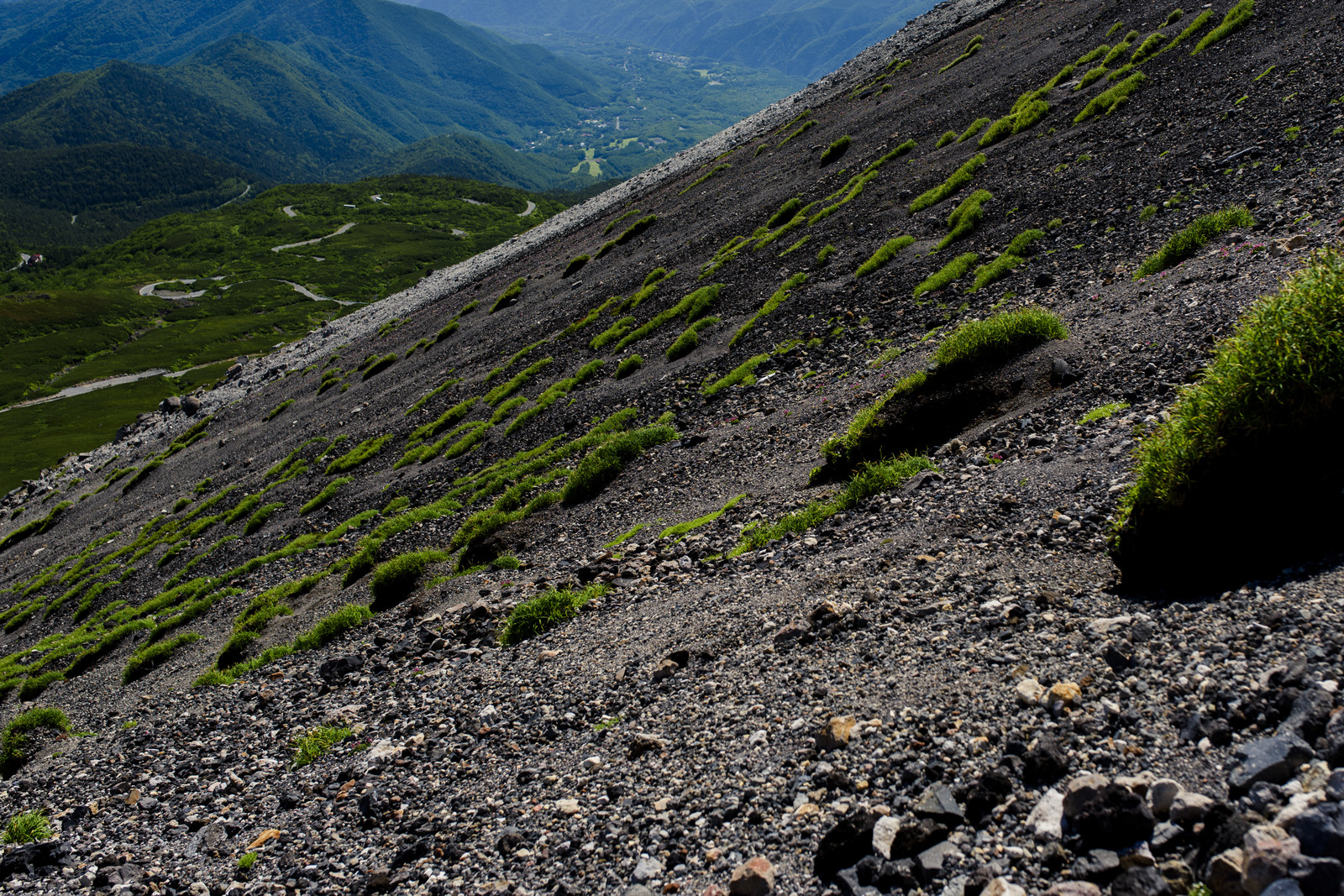 「高山植物も少ない乗鞍岳の斜面」の写真