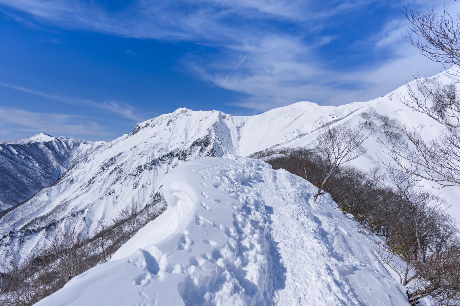 「新雪の中につけられたトレース(谷川岳)」の写真