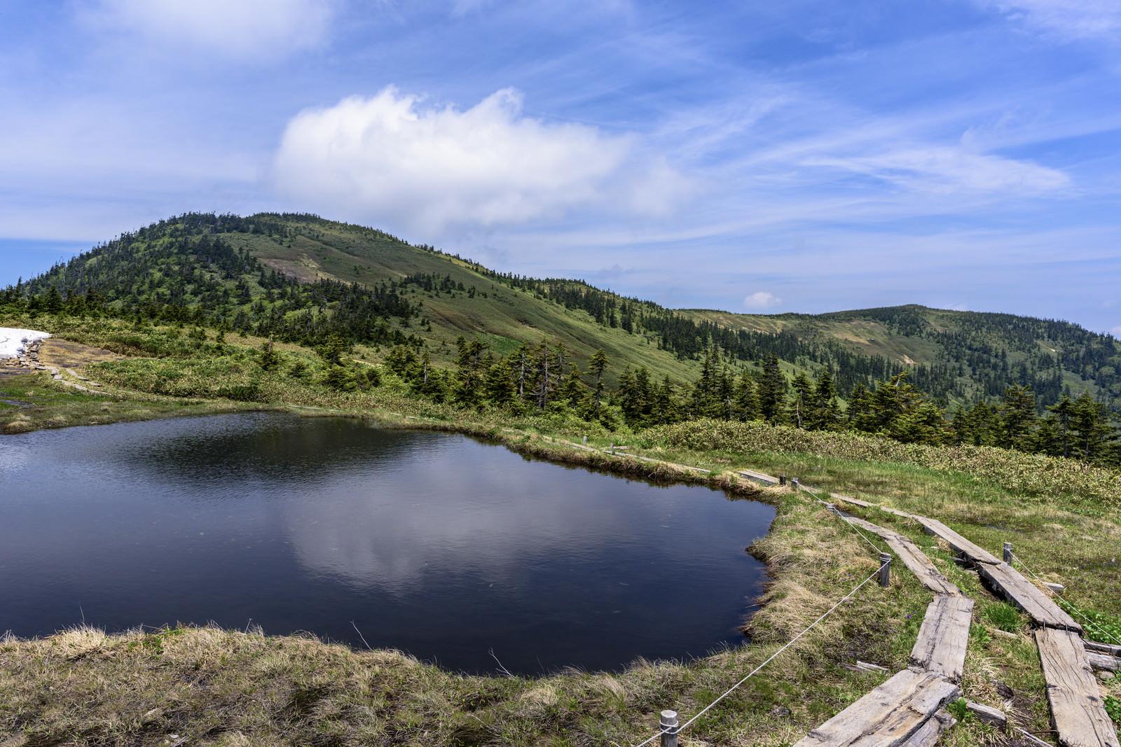 「会津駒ヶ岳の高層湿原(福島県南会津郡)」の写真