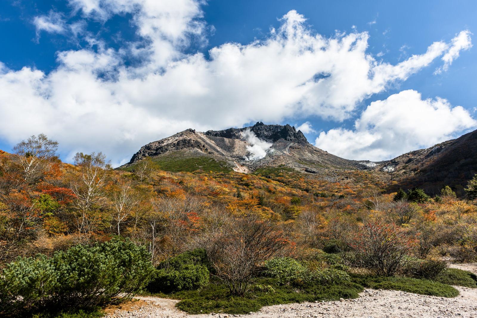 姥ヶ平の紅葉(那須岳)のフリー素材