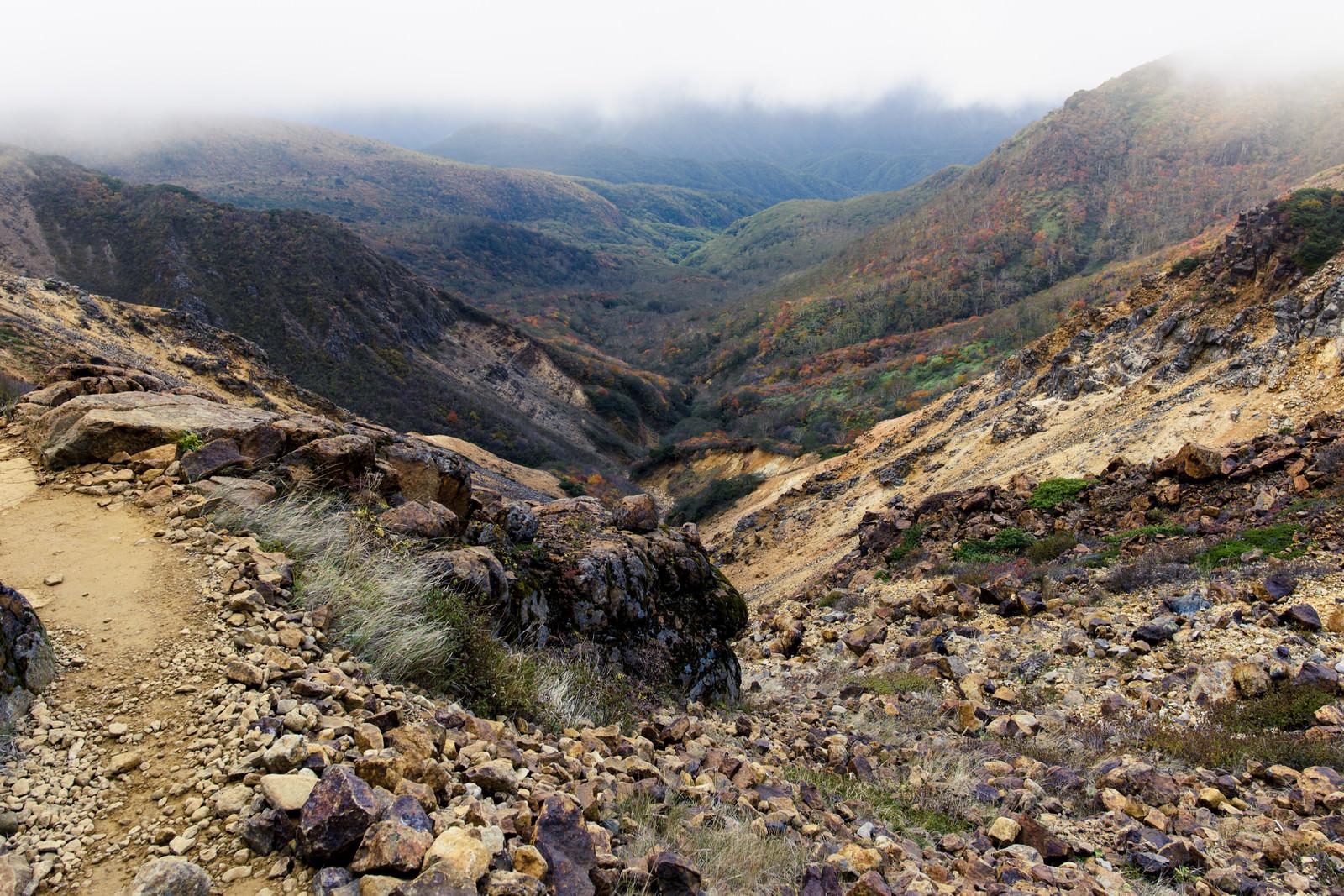 「火山性の大地と樹林帯の紅葉(那須岳)」の写真