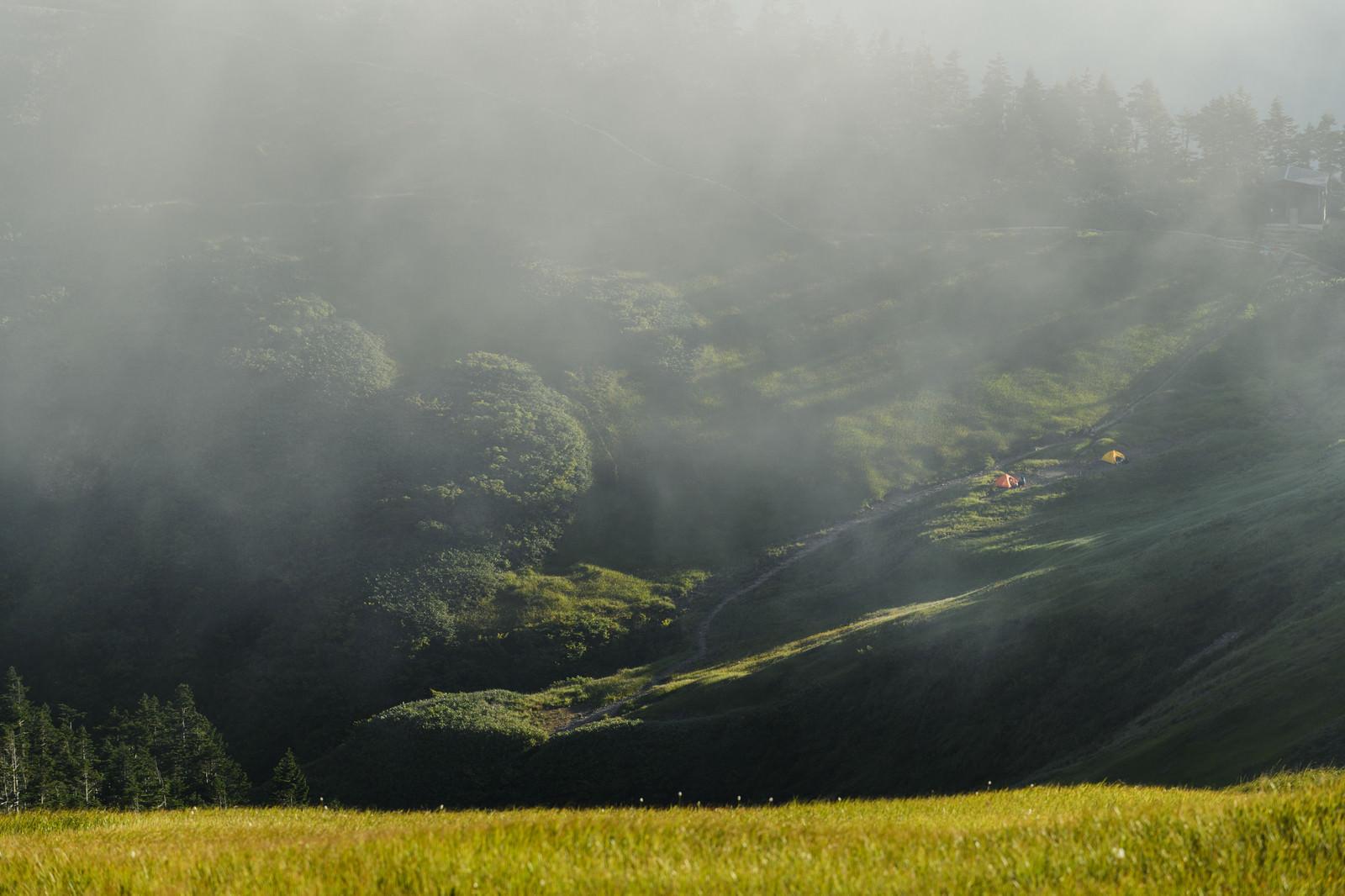 「夕日に照らされるテントと輝く草紅葉(巻機山)」の写真