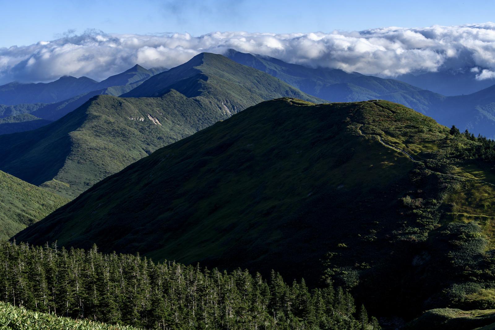 「谷川岳へと続く上越国境尾根(巻機山)」の写真