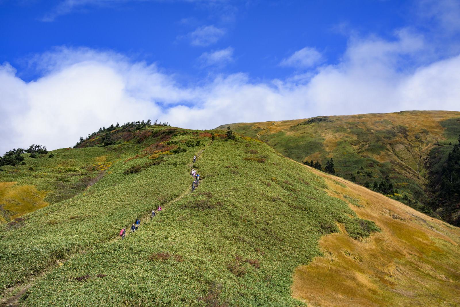 「雲が晴れた巻機山山頂への道」の写真
