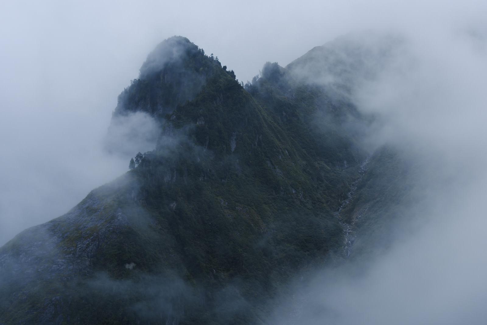 「雲の中から浮かび上がる天狗岩(巻機山)」の写真