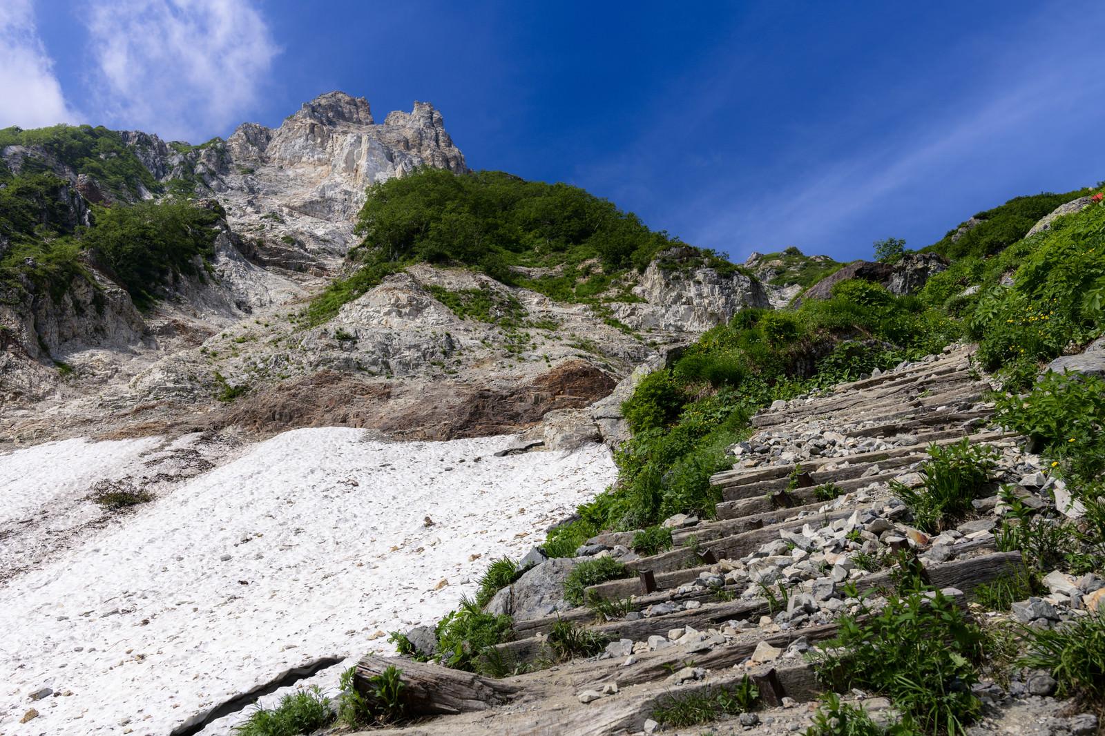 「天狗菱と雪渓(白馬岳)」の写真