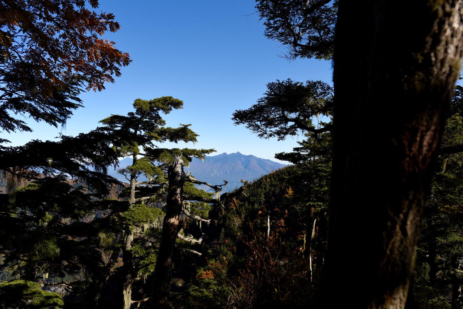 「黒戸尾根から見る八ヶ岳(甲斐駒ヶ岳)」の写真
