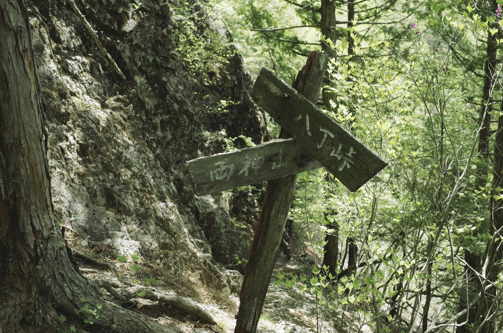 「両神山と八丁峠をさす道標」の写真