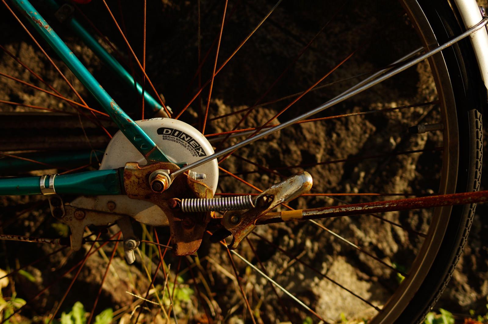 「錆びついた自転車の後輪」の写真