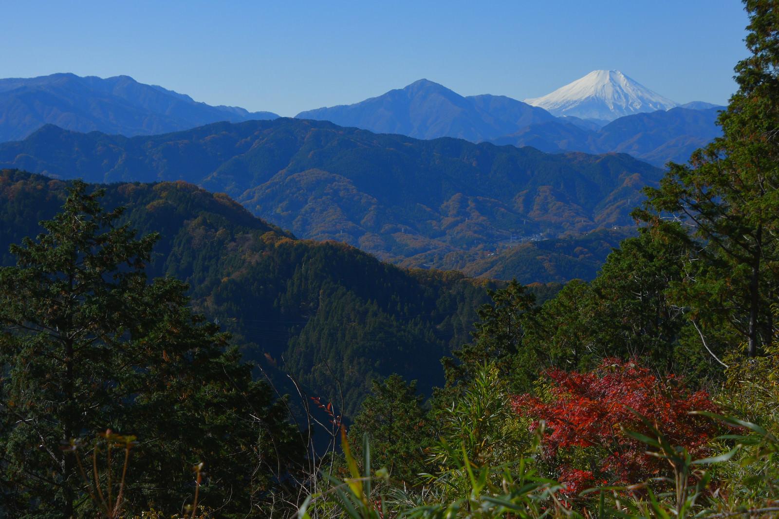 「高尾山から見た富士山」の写真
