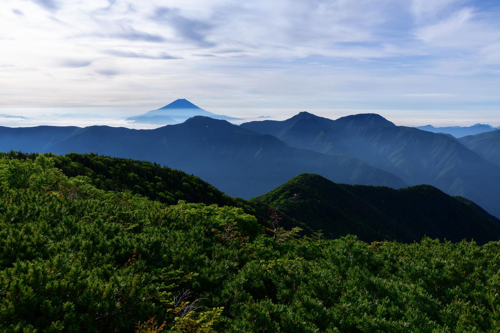 「富士見平から見る山々と富士山(赤石岳)」の写真