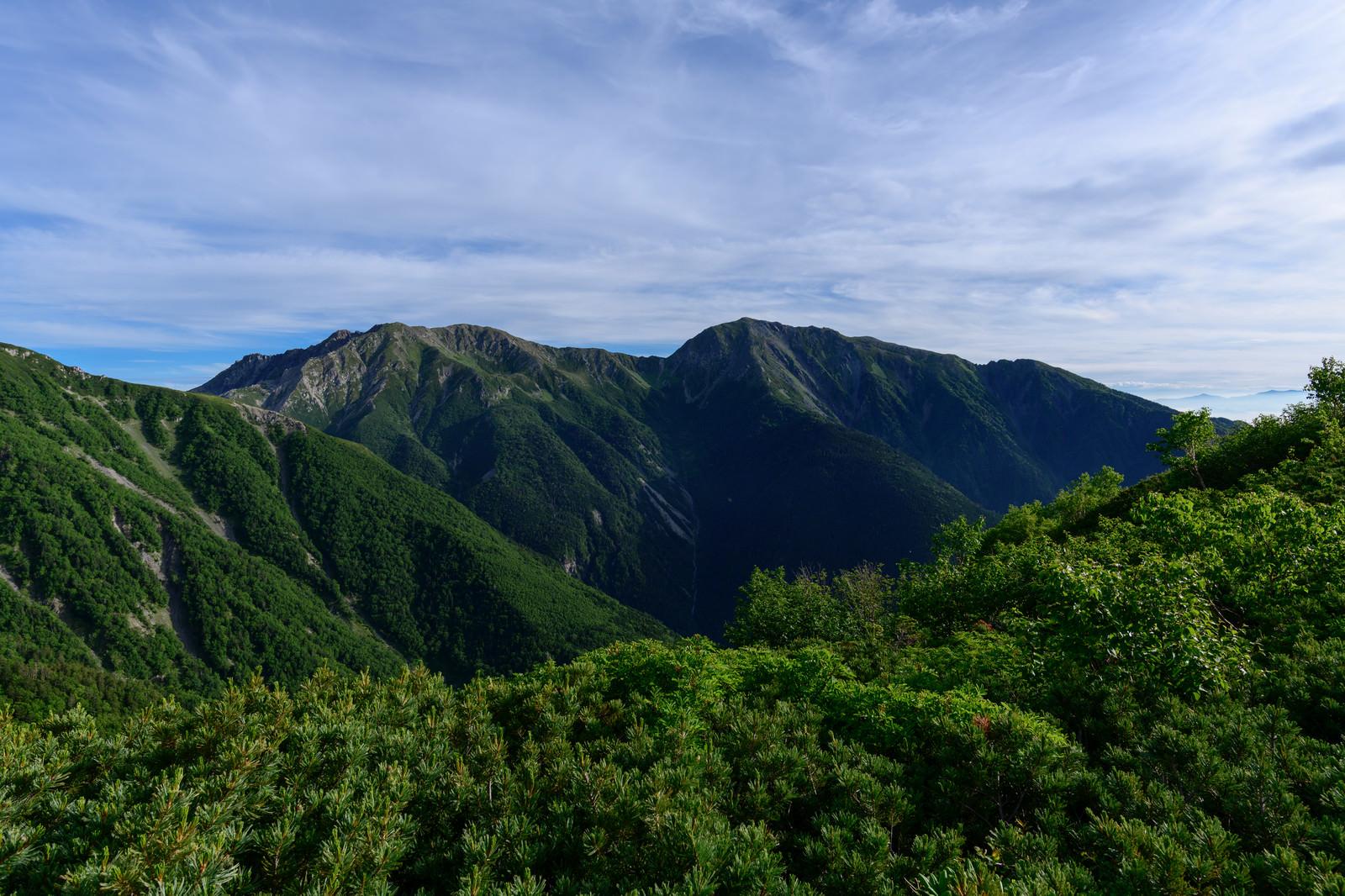 「赤石岳中腹から見る悪沢岳(南アルプス)」の写真