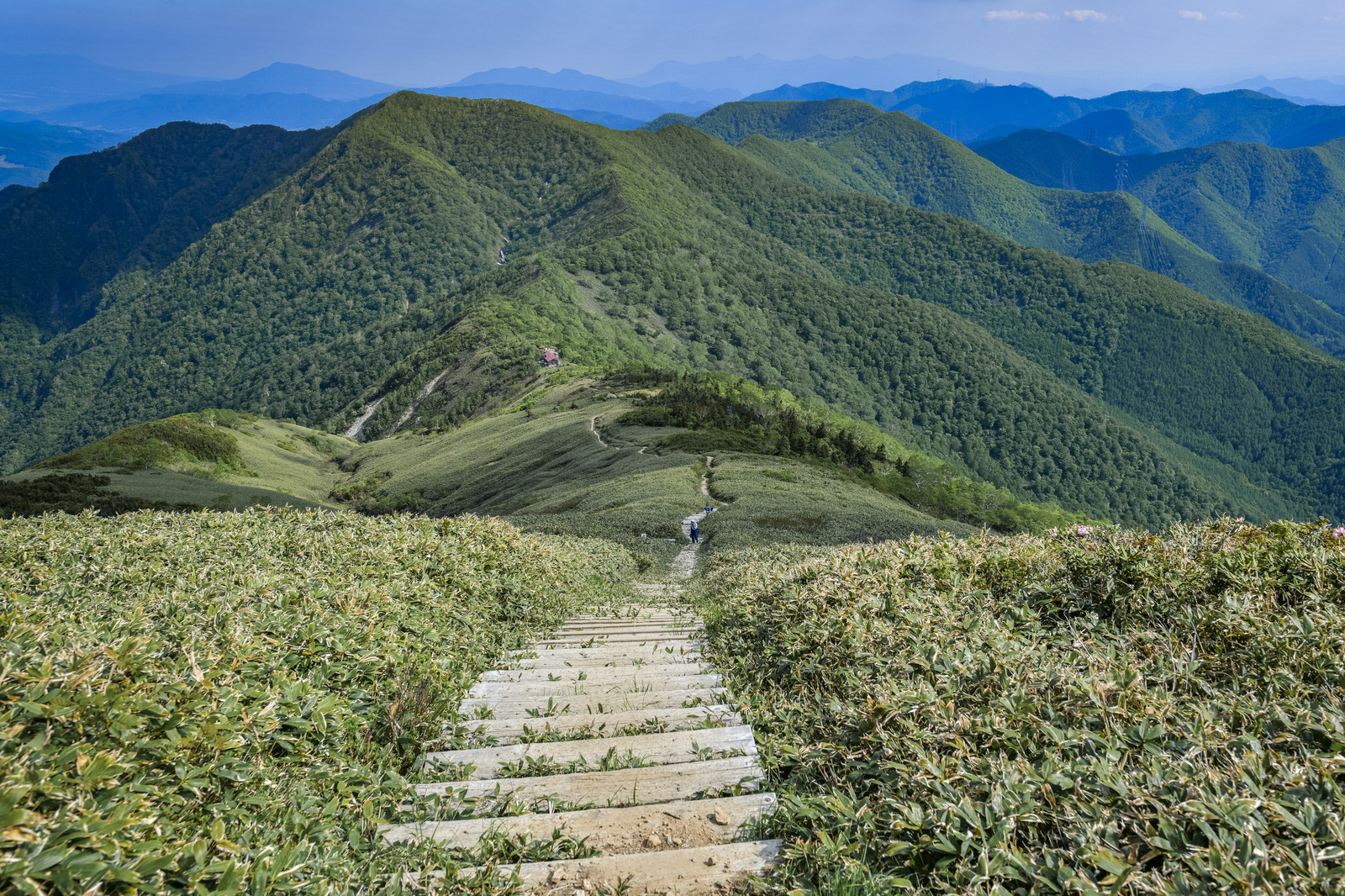 「平標山の登山道の階段から見る山小屋」の写真