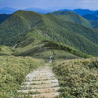 平標山の登山道の階段から見る山小屋の写真