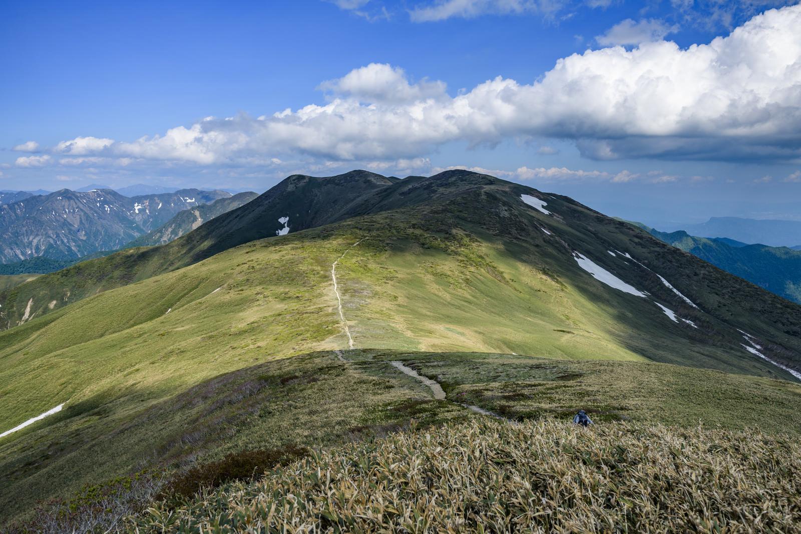 「晴れ間に照らされる仙ノ倉山の稜線と登山道」の写真