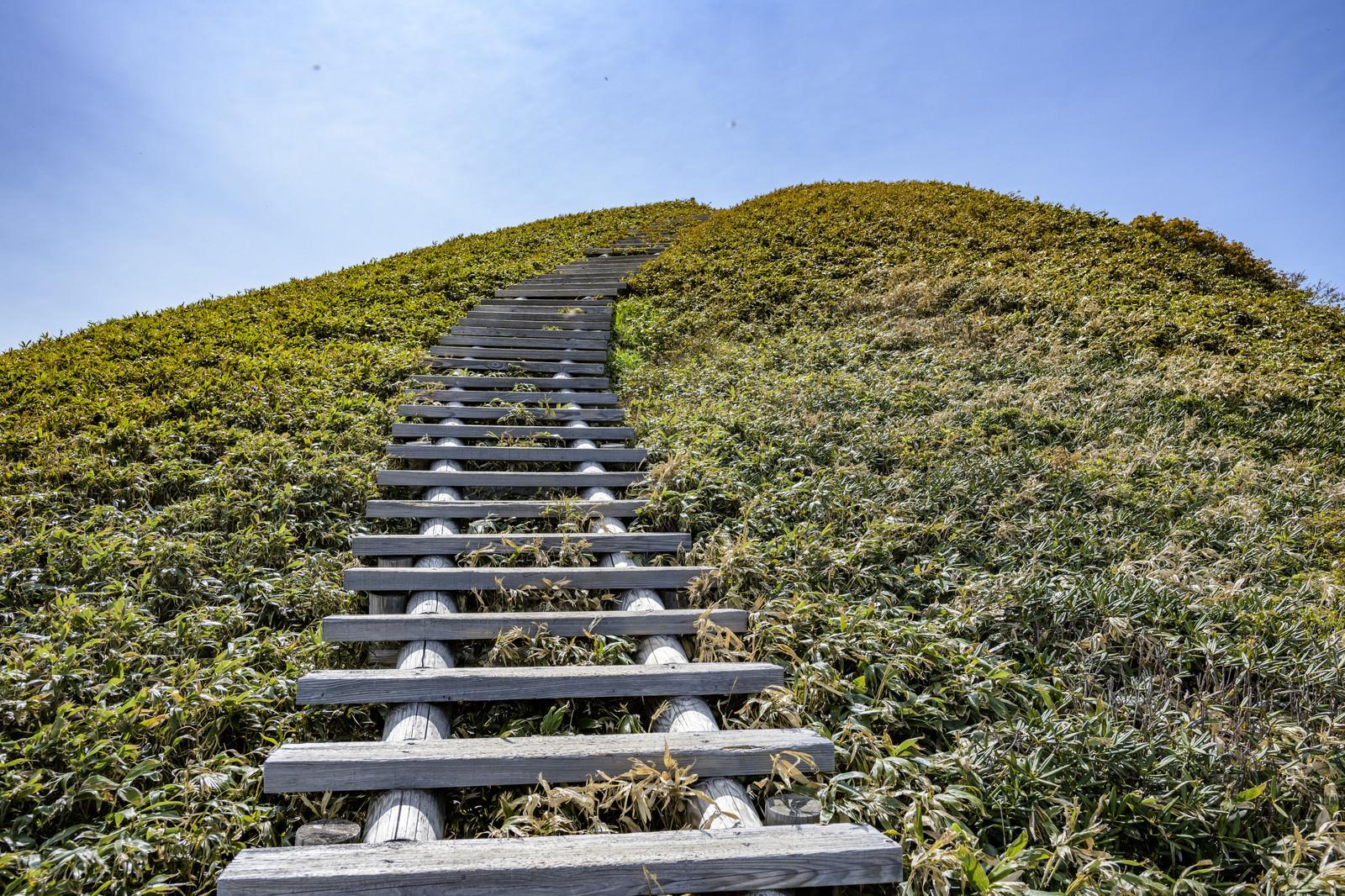 「天空へと向かう木道の階段」