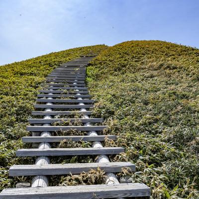 天空へと向かう木道の階段の写真