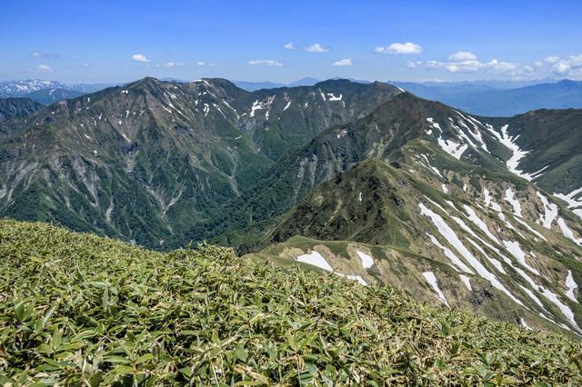 主脈から見る谷川岳の稜線の写真