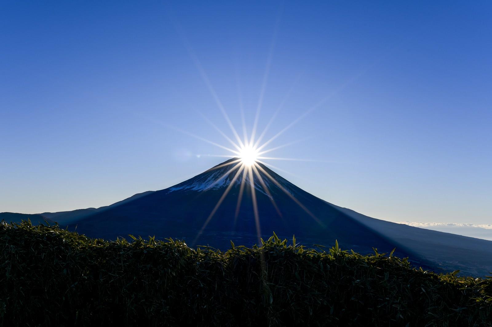 「竜ヶ岳から見るダイヤモンド富士」の写真