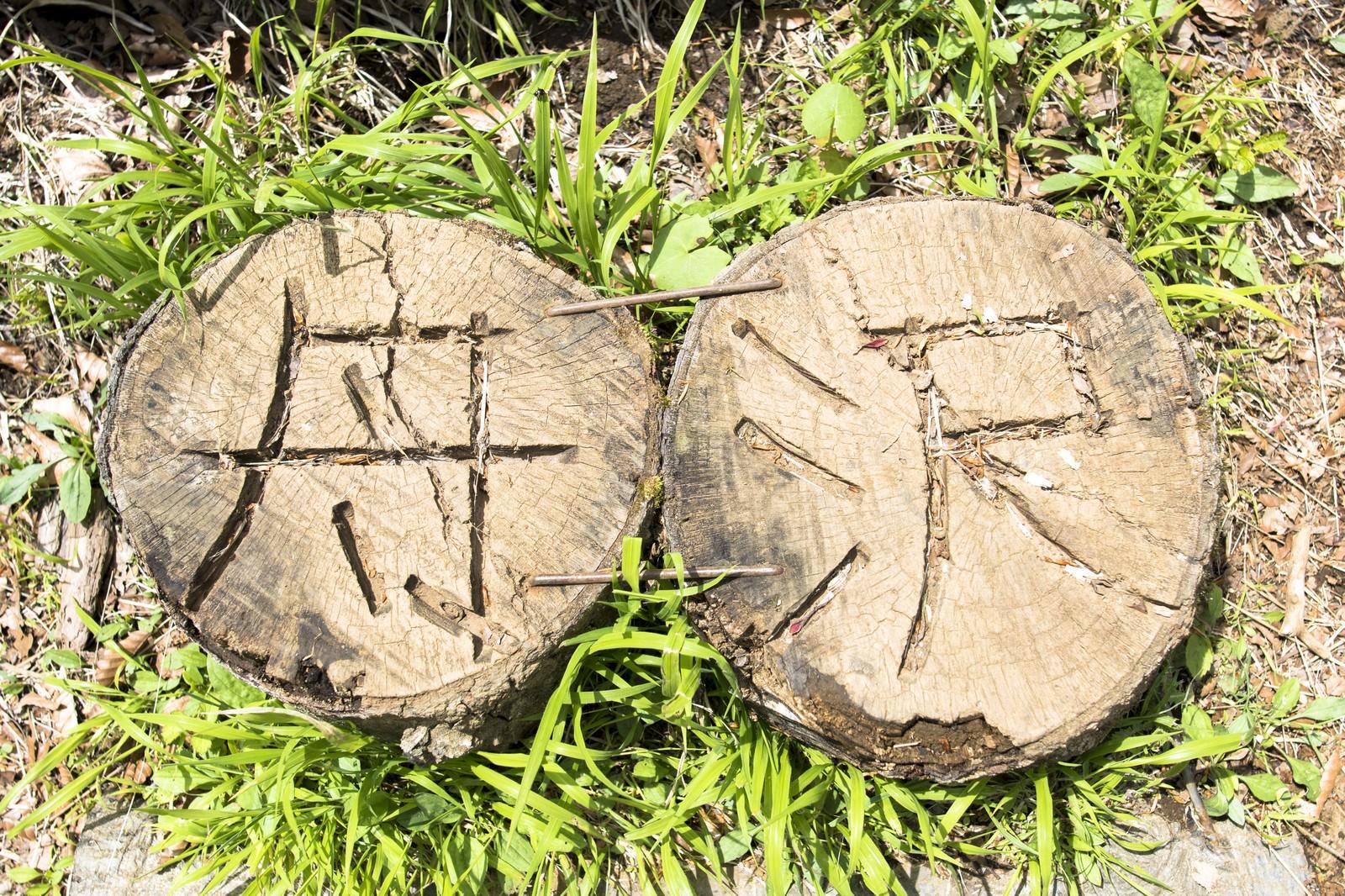 「丹沢と彫られた木の杭」の写真
