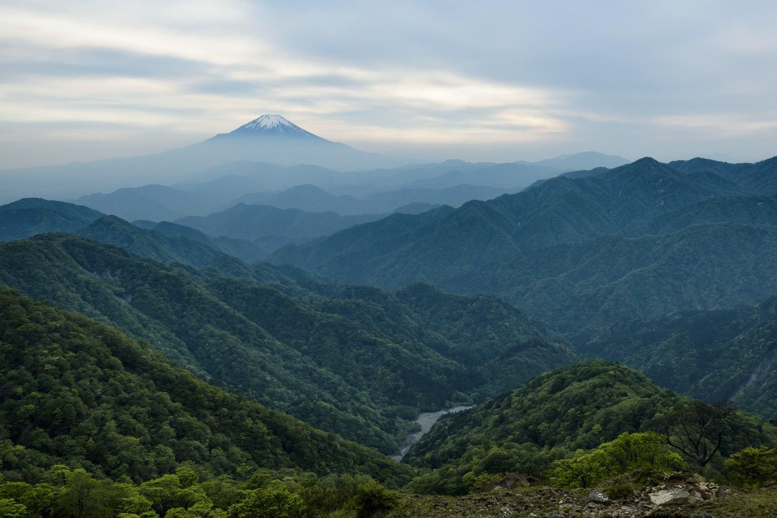 「丹沢山地から見る富士山」の写真