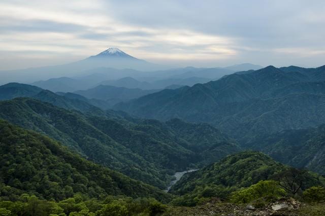 丹沢山地から見る富士山の写真