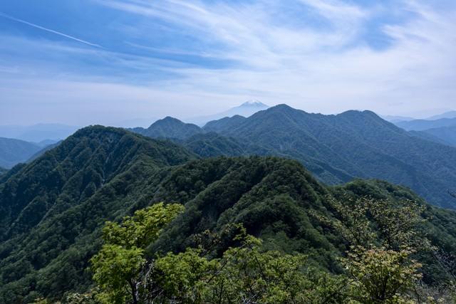 蛭ヶ岳主稜の山並みと富士山の写真
