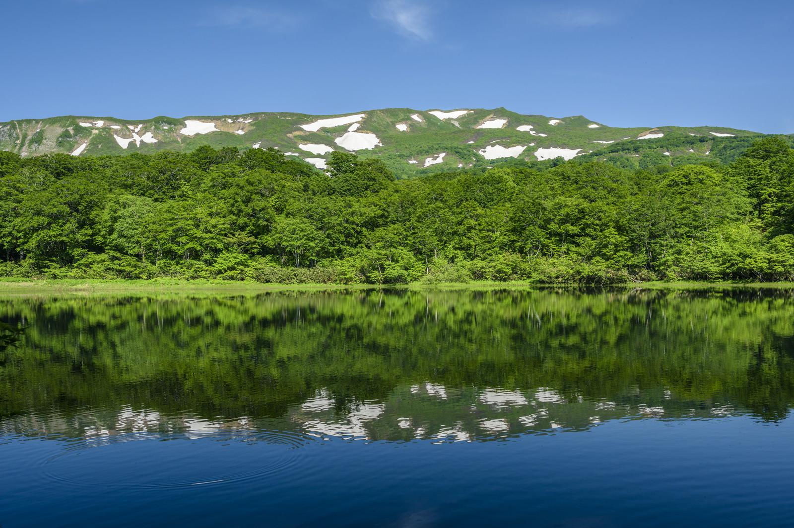 「湖面に反射する焼石岳の風景(奥羽山脈)」の写真