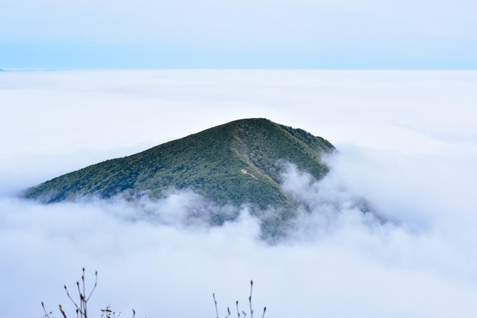 「雲の海に浮かぶ山の島(蔵王)」の写真