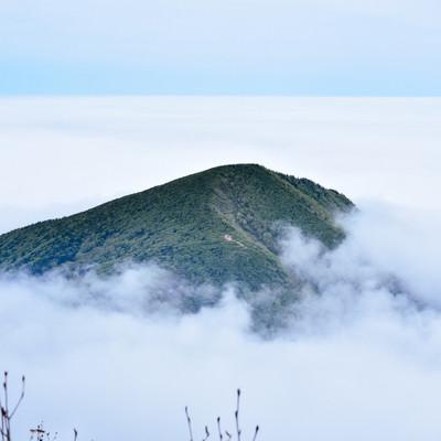 雲の海に浮かぶ山の島(蔵王)の写真