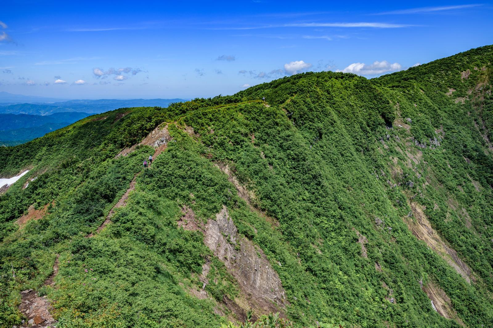 「初夏の浅草岳登山道と登山者」の写真