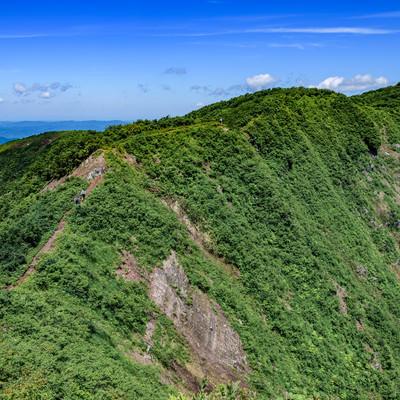 初夏の浅草岳登山道と登山者の写真
