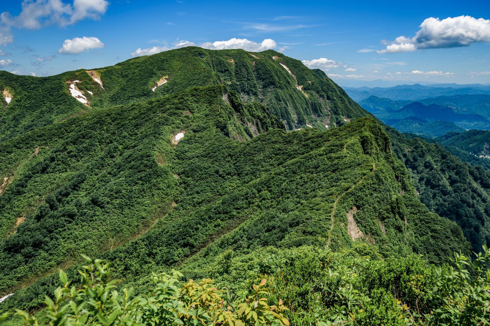「浅草岳の稜線(越後山脈)」の写真