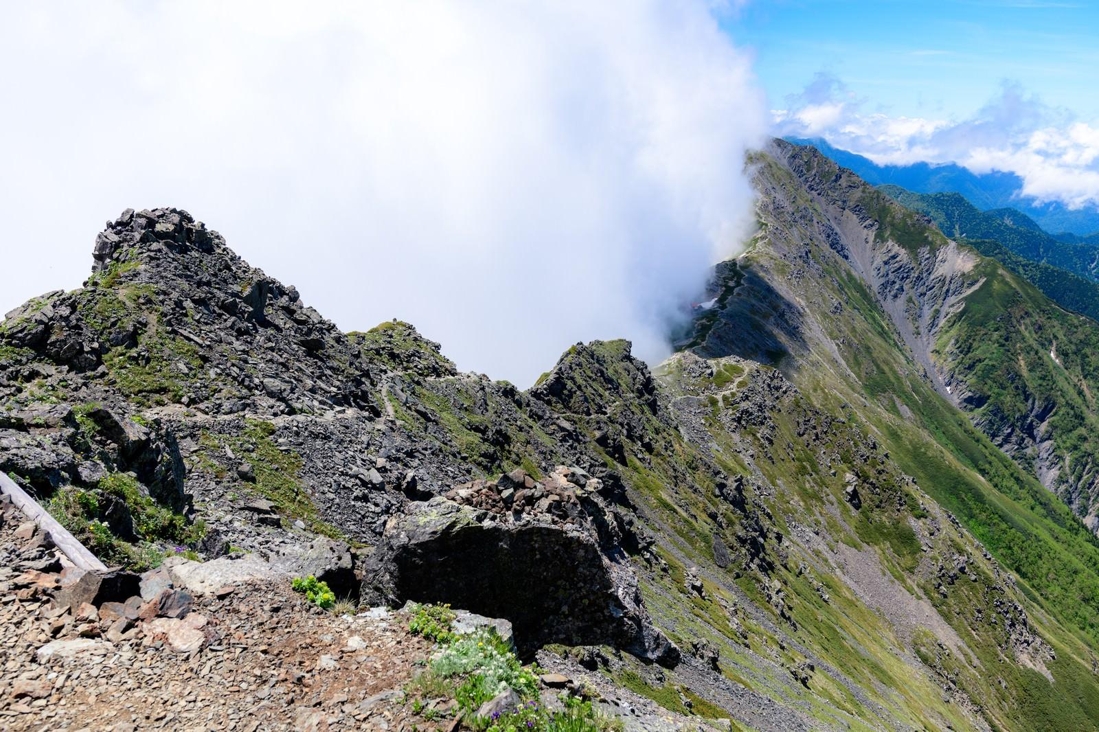 「雲に包まれる北岳稜線」の写真