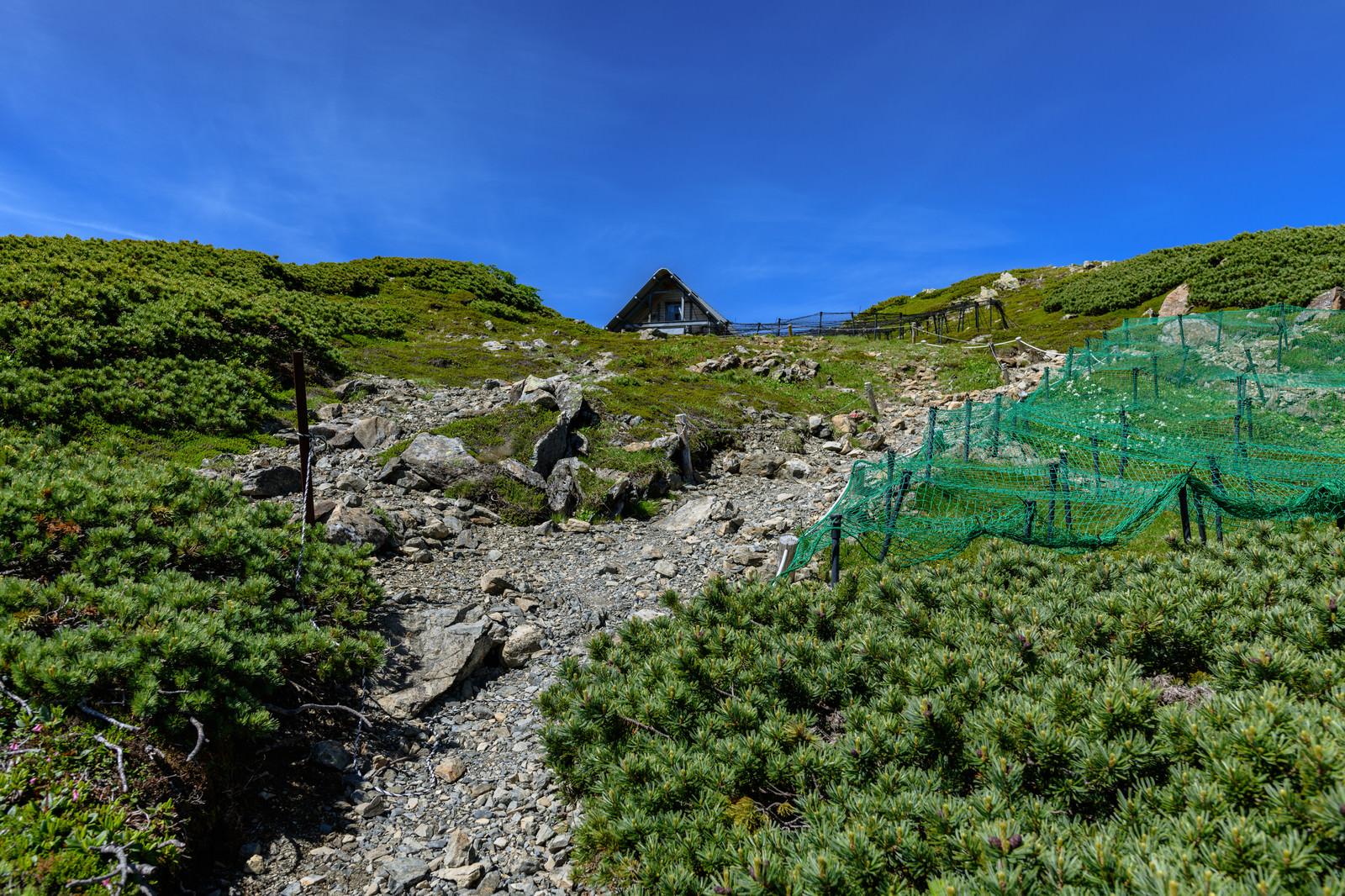 「中岳避難小屋までの登山道(南アルプス)」の写真