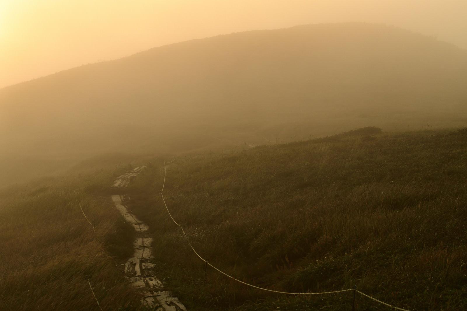 「ガスに包まれる夕暮れの登山道」の写真